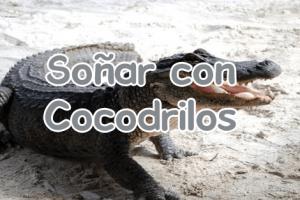 soñar-con-cocodrilos