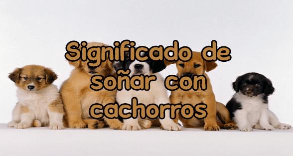 significado de soñar con cachorros