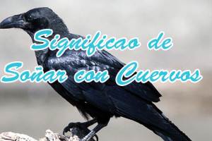 significado de soñar con cuervos