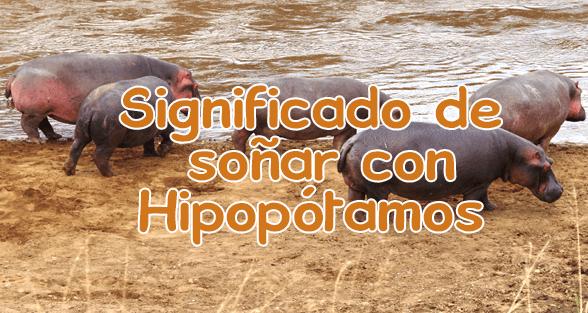 soñar con hipopotamos