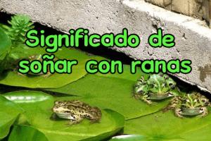 soñar con ranas