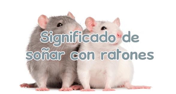 soñar con ratones