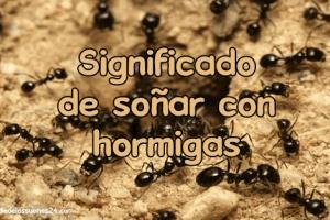 soñar con hormigas