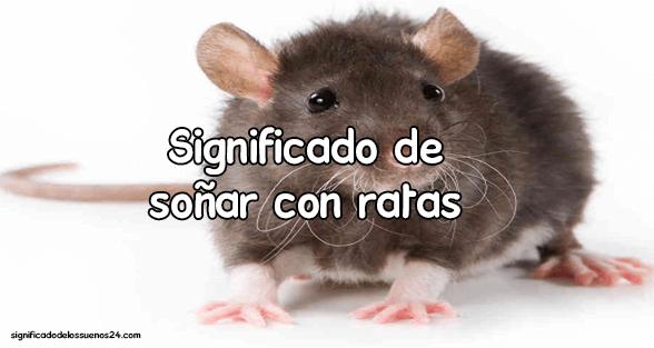 sonar con ratas